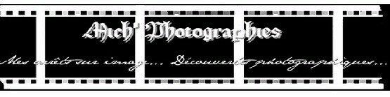 mich_photogra