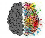 brain-2062049_1920