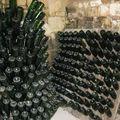 L'avenir de Bessé, cave à vin