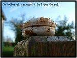 Cliquer_pour_agrandir_717