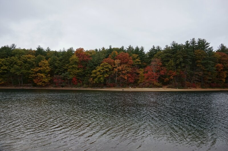 Walden Pond (10)