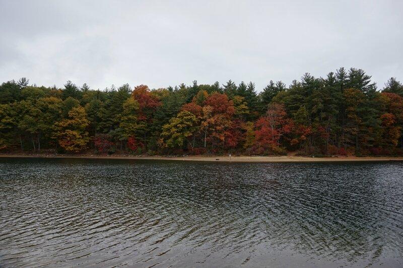 Walden Pond (10)