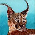 Lynx - huile 20 x 20