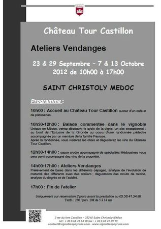 Ateliers Vendanges Chateau Tour Castillon