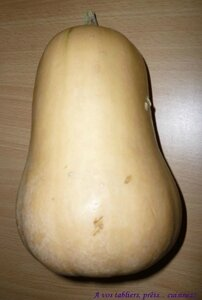 Courge butternut_1