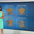 patriciacharbonnier05.2014_06_23_meteotelematinFRANCE2