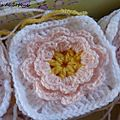 Blanket Daisy (1)