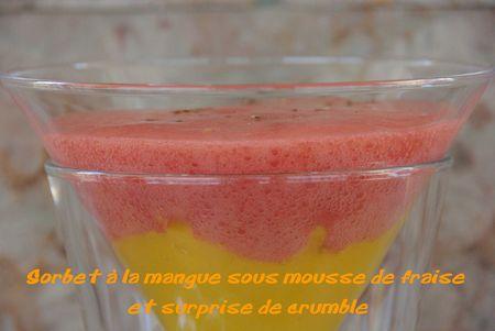 Sorbet___la_mangue_sous_mousse_de_fraise