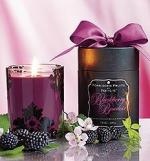 ws15_products_home_fragrances_candlemelts_forbidden_fruit (1)