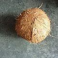 Qui a mangé ma noix de coco ?