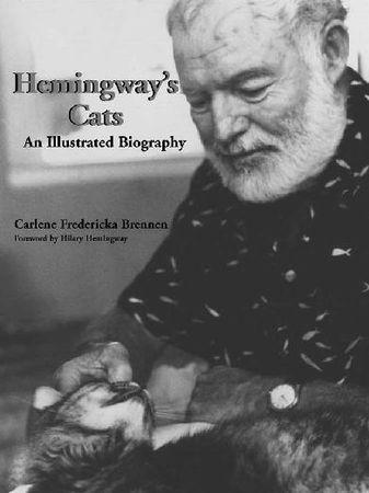 hemingway_cat7