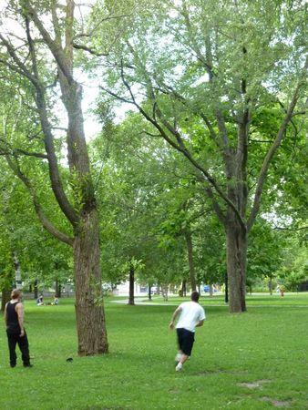PL jardin des merveilles1962 parc 005