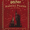 Harry potter - magical places from the films ~~ jody revenson