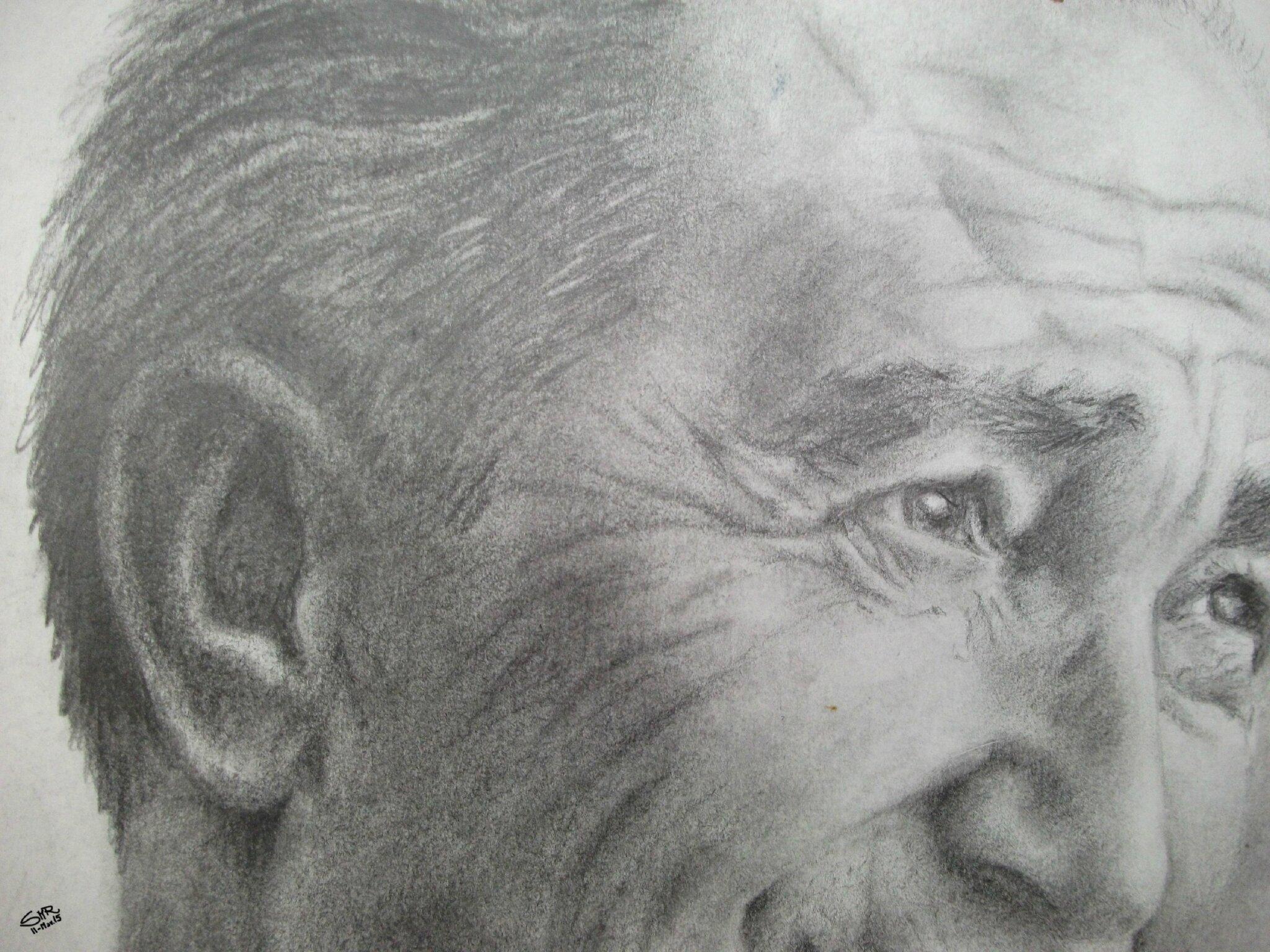 smr Portrait Papa - detalle / detail 02