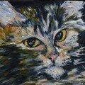 Tête de chat - huile sur toile - 24/19 cm