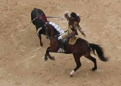 Corrida___cheval_04