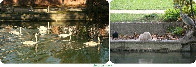 Quartier Drouot - Bord du canal