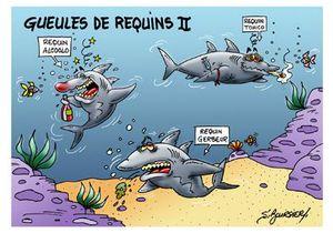 Geules de requins II