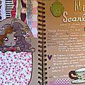 Mini-scarlett