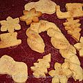 Christmas cookies ou biscuits cannelle gingembre