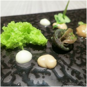 Escargots de Bourgogne (1)