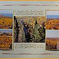 Canada forêt 2 001