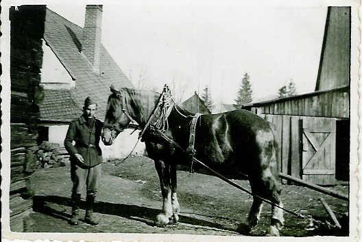 16 mars 1943 acpgkrgef3945 Fuchs le cheval