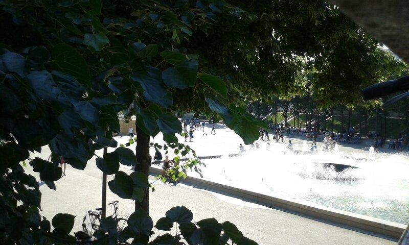 bassin et arbres en été