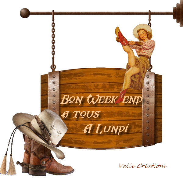 wend cowgirl1