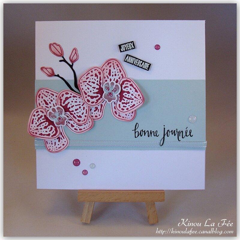 Carte Orchidée Grimpante rose et bleu 1
