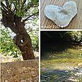 Cascade, bambous & ricochets