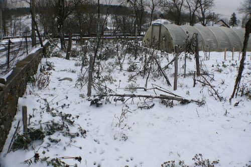 2008 11 23 La neige dans le jardin