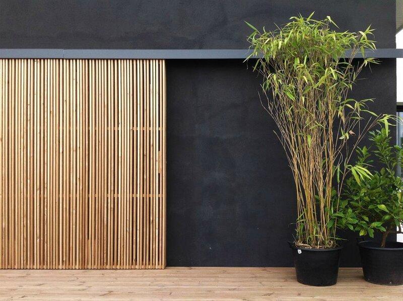 744136-vue-exterieure-design-et-contemporaine-facade-et-enduit-noir
