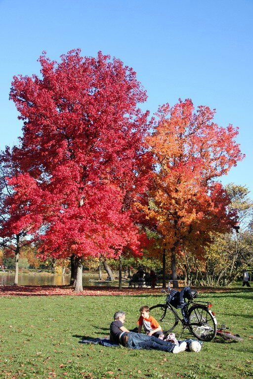 9-Bois de Vincennes_4936