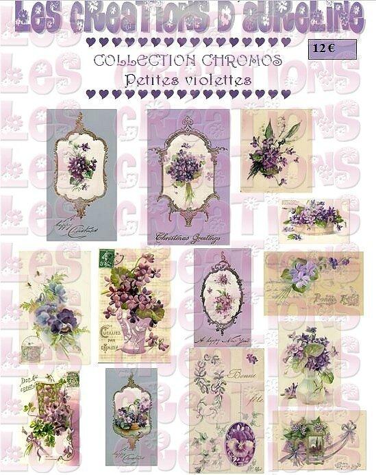 pochette petites violettes