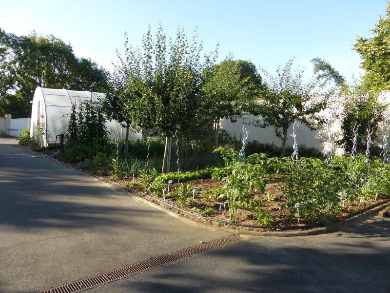 7-jardin (2)