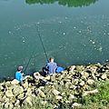 Concours de pêche 18 juillet 2015 (10)