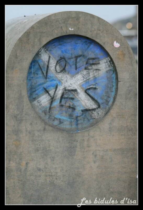 referendum (2)