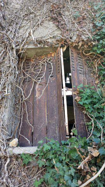 maison abandonnée Lprice (30)