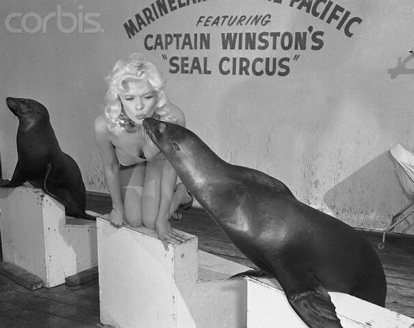 jayne-1956-12-CA_palos_verdes-marineland-by_bob_grosh-1