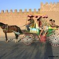 taroudant