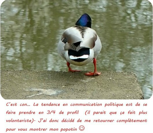Ville de Mulhouse - Communication