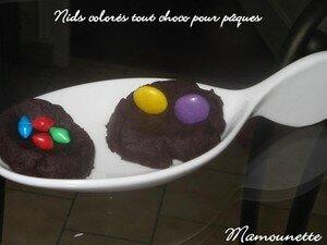 Nid_color__tout_choco_pour_p_ques_016