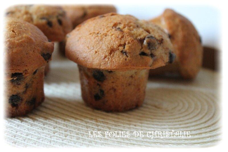 Muffins okara pepites 3