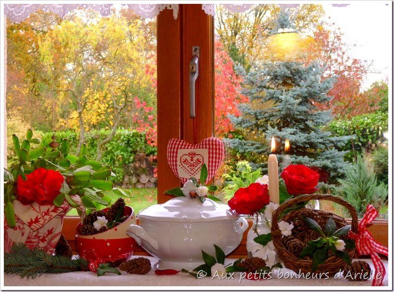 Un avant-goût de Noël (8)