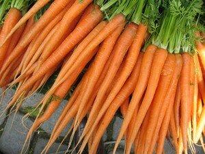 carrot_bis