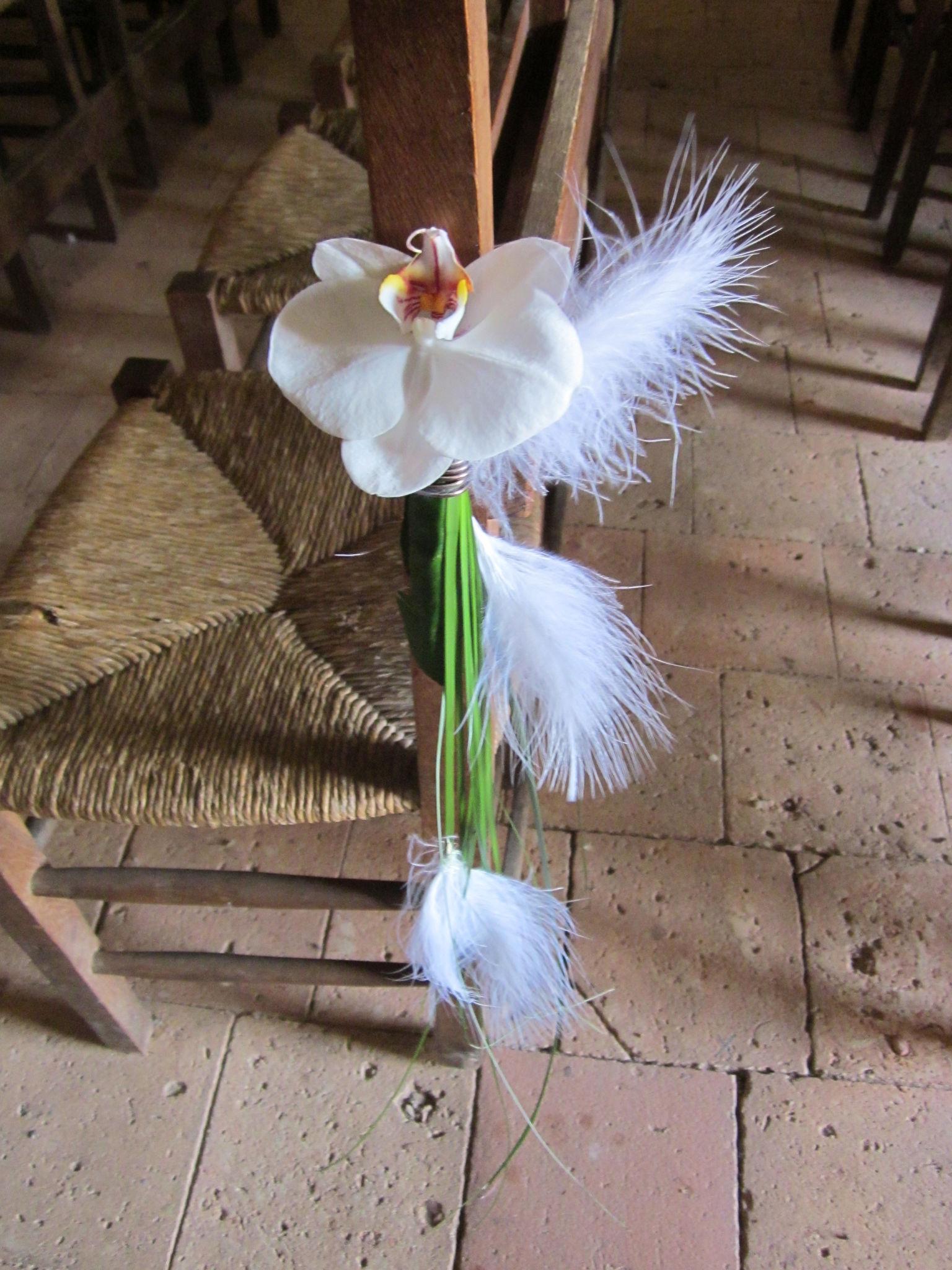 decor de banc d eglise avec orchid 233 e phalaenopsis photo de cr 233 ations florales pour votre