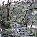 Randonnée sur les coteaux de saint-laurent-sur-sèvre