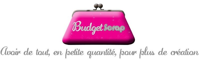 banniere blog budget scrap2