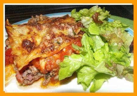 DSCF0718 lasagne bis
